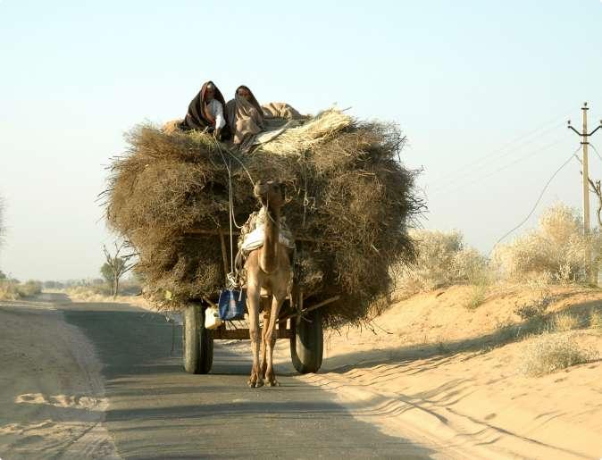rural-india-2