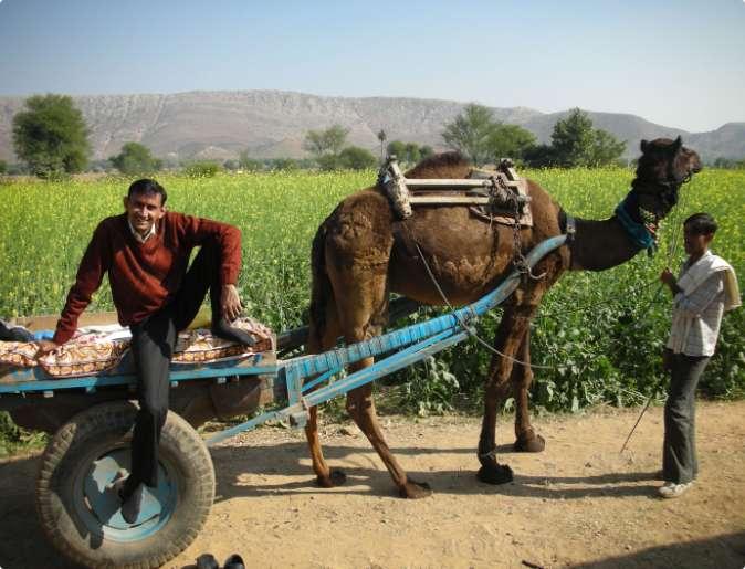rural-india-3
